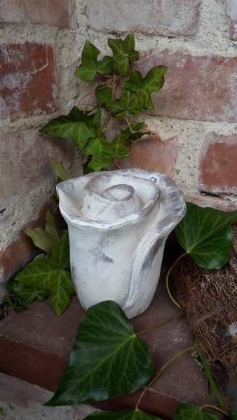 Blume Hoch Klein