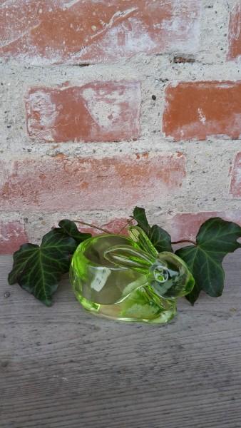 Glashase Für Teelicht Grün