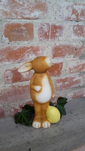 Hase Mit Gelbem Ei