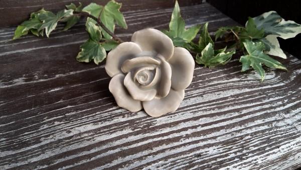 Möbelkopf Blume Beige